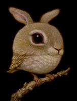 'Rabbit Bird''