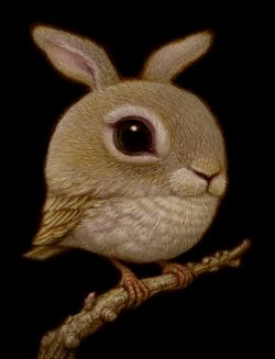 Rabbit_Bird_Naoto_Hattori