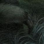 Whisper_Dan_May_Detail