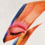 Bowie_Von_Detail