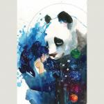 Panda_Hugs_From_Universe_800
