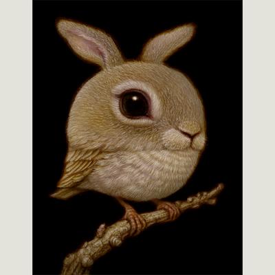 Rabbit_Bird_Naoto_Hattori_800